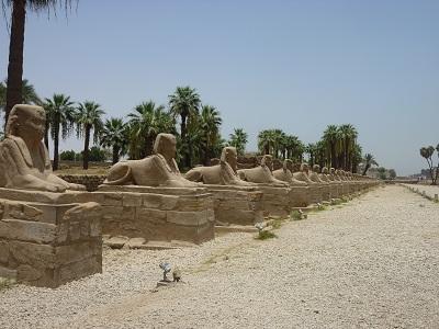 エジプト 3日目 ルクソール神殿 9.jpg