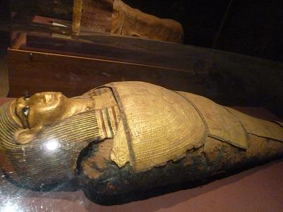 エジプト 4日目 ヌビア博物館 1.jpg